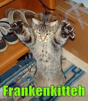 Frankenkitteh