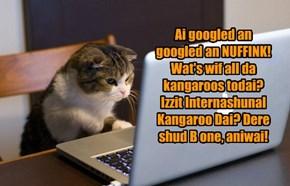 Ai googled an googled an NUFFINK! Wat's wif all da kangaroos todai? Izzit Internashunal Kangaroo Dai? Dere shud B one, aniwai!