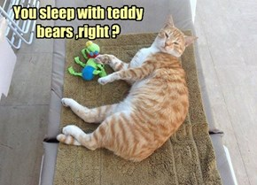 You sleep with teddy bears ,right ?