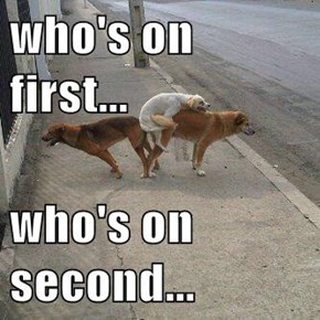 who's on first...  who's on second...