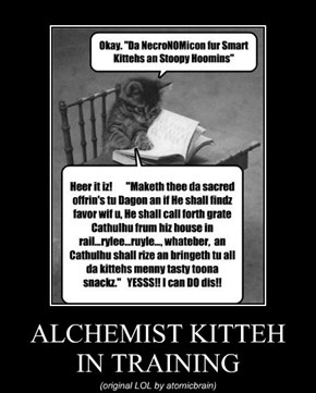 ALCHEMIST KITTEH   IN TRAINING