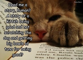 Read me a  story, human? A story of a kitteh being good and not scratching the dog and getting big bowls of  tuna for being good?