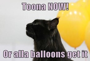 Toona NOW!  Or alla balloons get it
