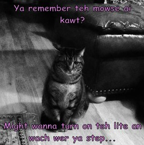 Ya remember teh mowse ai kawt?   Might wanna turn on teh lite an wach wer ya step...