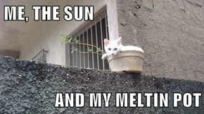 ME, THE SUN  AND MY MELTIN POT