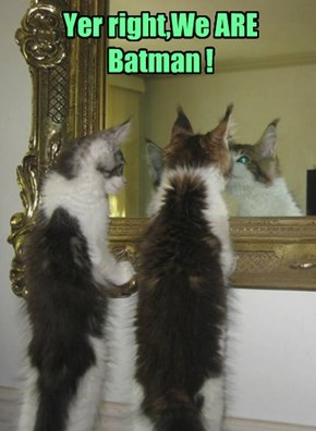 Yer right,We ARE Batman !