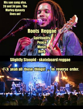 Stephen Marley and Slightly Stoopid.  Saw them in Eugene, OR 9 Jul 14