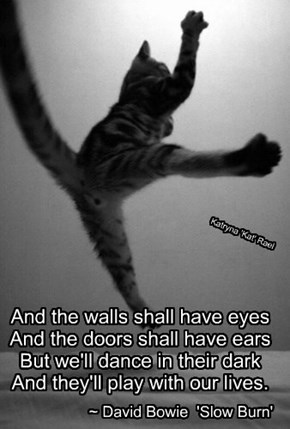 And the walls shall have eyes   And the doors shall have ears   But we'll dance in their dark   And they'll play with our lives.