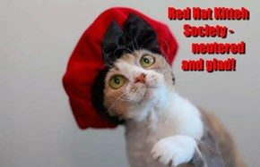 Red Hat Kitteh Society -               neutered  and glad!