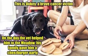 RIP Dukey
