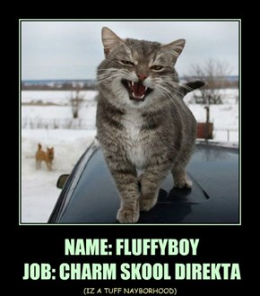 NAME: FLUFFYBOY  JOB: CHARM SKOOL DIREKTA