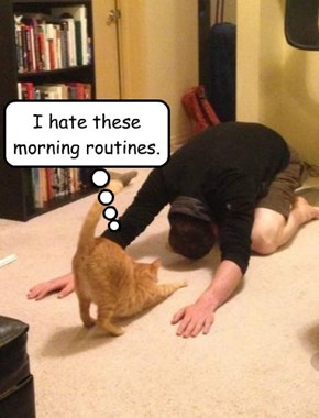 I hate these morning routines.