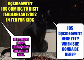 bgcmeowrrrr  IDS COMING TO BISIT TENDERHEART2002  EN TEH FUR KIDS