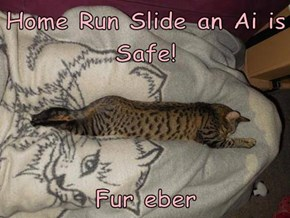 Home Run Slide an Ai is Safe!   Fur eber