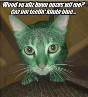 Wood yu pliz boop nozes wif me? Coz um feelin' kinda blue...