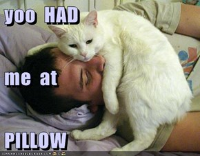yoo  HAD me  at PILLOW