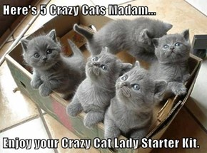 Here's 5 Crazy Cats Madam...  Enjoy your Crazy Cat Lady Starter Kit.
