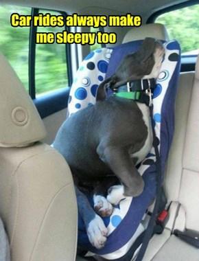 Car rides always make me sleepy too
