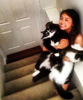 That's a Whole Lotta Cat!