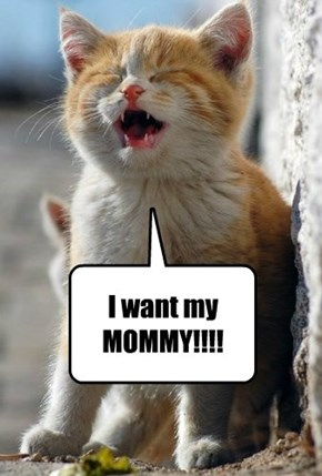 I want my MOMMY!!!!