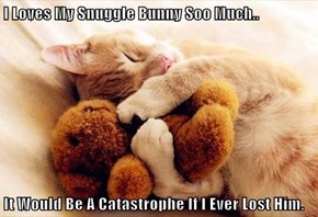 I Loves My Snuggle Bunny Soo Much..  It Would Be A Catastrophe If I Ever Lost Him.