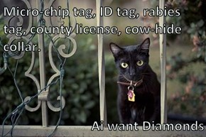Micro-chip tag, ID tag, rabies tag, county license, cow-hide collar.   Ai want Diamonds