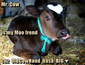Mr. Cow is my Moo frend cuz  OldCowHand  hasa  BIG ♥