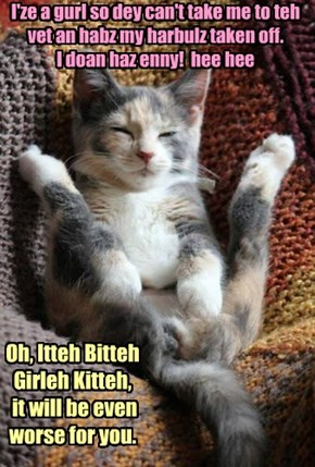 Oh, Itteh Bitteh Girleh Kitteh,  it will be even worse for you.