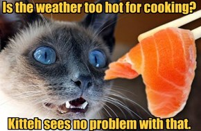 Is the weather too hot for cooking?        Kitteh sees no problem with that.