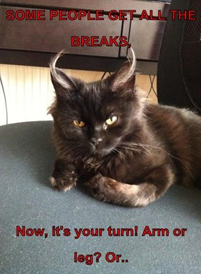 SOME PEOPLE GET ALL THE BREAKS,  Now, it's your turn! Arm or leg? Or..