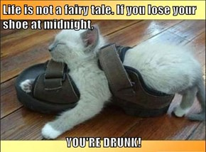 Life is not a fairy tale. If you lose your shoe at midnight,  YOU'RE DRUNK!