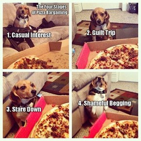 The Four Stages of Begging