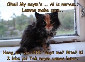 Ohai! My naym's .. Ai is nervus.. Lemme make sure..   Hang on, you DID 'dopt me? Rite? K! I lubs yu! Teh naym comes later.