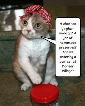 A checked gingham mobcap? A jar of homemade preserves? Are we entering a contest at Pioneer Village?