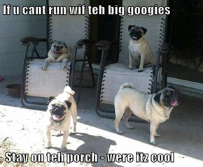 If u cant run wif teh big googies   Stay on teh porch - were itz cool