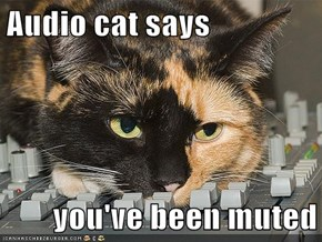 Audio cat says  you've been muted