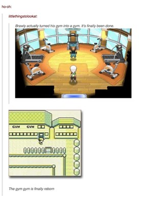 The Place Were Mega Swampert Works Out