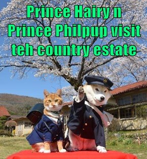Prince Hairy n Prince Philpup visit teh country estate