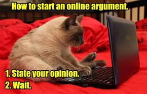 How to start an online argument.