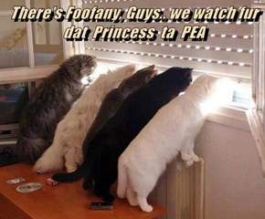 There's Foofany, Guys.. we watch fur dat  Princess  ta  PEA