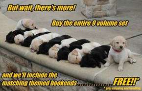 It's our most puppular offer yet!!!