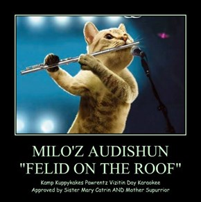 "MILO'Z AUDISHUN  ""FELID ON THE ROOF"""