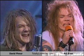 David Pirner Totally Looks Like Axl Rose