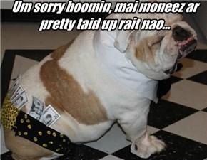Um sorry hoomin, mai moneez ar pretty taid up rait nao...