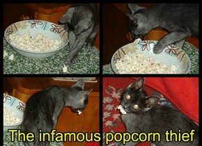 The infamous popcorn thief