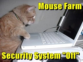 "Mouse Farm  Security System ""Off"""
