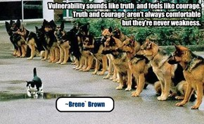 Vulnerability sounds like truth and feels like courage.Truth and courage aren't always comfortable but they're never weakness.~Brene` Brown