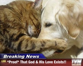 Breaking News - *Proof* That God & His Love Exists!!