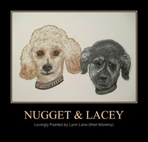 NUGGET & LACEY