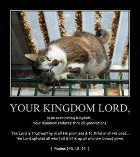 YOUR KINGDOM LORD,